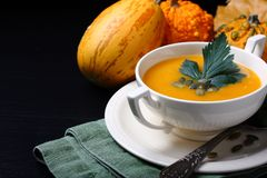 Pumpkin soup in white plate with celery leaves Stock Photography