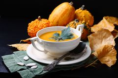 Pumpkin soup in white plate with fresh pumpkins Royalty Free Stock Photo