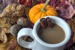 Pumpkin spice Royalty Free Stock Images