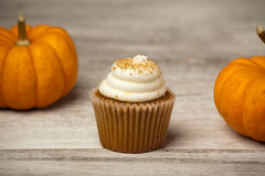 Pumpkin Spice Cupcake. S and mini pumpkins on turquoise background Stock Photography