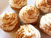 Pumpkin spice cupcakes. Close up of pumpkin spice cupcakes on a white plate Stock Image