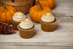 Pumpkin Spice Cupcakes Royalty Free Stock Images