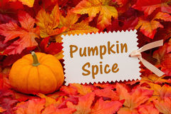 Pumpkin spice message. A pumpkin with some fall leaves and a gift tag with text Pumpkin Spice royalty free stock photos