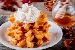 Pumpkin spice waffles with whipped cream for Thanksgiving Day. stock photography