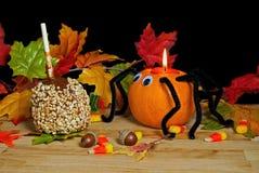 Autumn pumpkin spider Stock Photos