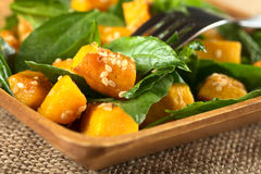Pumpkin and Spinach Salad Royalty Free Stock Photos