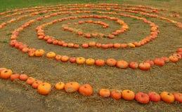 The Pumpkin Spiral Royalty Free Stock Photos