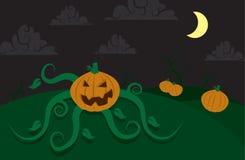 Pumpkin Spooky Royalty Free Stock Photography