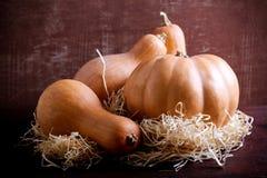 Pumpkin and squash Stock Photos