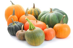 Pumpkin and squash collection Royalty Free Stock Image