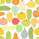 Pumpkin, squash seamless pattern Stock Photo
