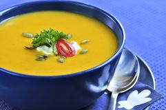 Pumpkin or squash soup Royalty Free Stock Photos