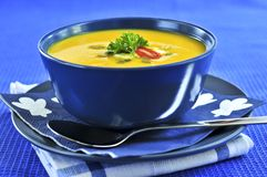 Pumpkin or squash soup Royalty Free Stock Photo