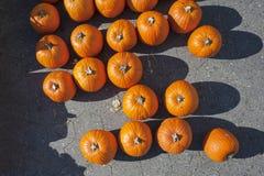 Pumpkin Stalks Top View Stock Photo