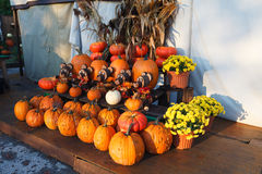 Pumpkin Stand Royalty Free Stock Photography