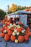 Pumpkin Stand Stock Photos