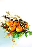 Pumpkin still life. Pumpkins, indian corn and fall leaves on a cake pedestal with cross prosessing stock photo