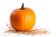Pumpkin On Straw Stock Photography