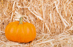 Pumpkin on Straw Bale Royalty Free Stock Photo