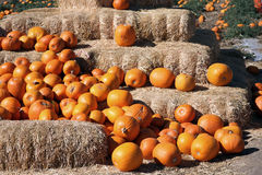 Pumpkin straw bales Royalty Free Stock Photo