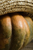 Pumpkin in straw hat Stock Image
