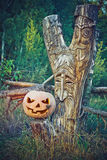 Pumpkin on the stump. decorative carvings. Jack O Lantern for Ha Royalty Free Stock Image