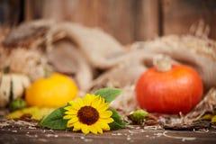 Pumpkin and sunflower autumn still life Royalty Free Stock Photos