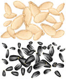Pumpkin and sunflower seeds Stock Photos