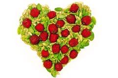 Healthy heart Royalty Free Stock Photos