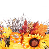Pumpkin, Sunflowers and Fall Leaves isolated. Autumn Royalty Free Stock Photography