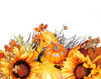 Pumpkin, Sunflowers and Fall Leaves isolated. Autumn Stock Photography
