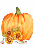 Pumpkin With Sunflowers Watercolor Stock Photography