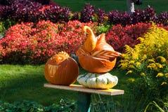 Pumpkin swan and Jack-O'Lantern Royalty Free Stock Photos