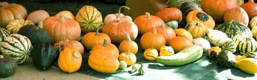 Pumpkin table. Vendor's table fall farmer markets bio in italy Stock Images