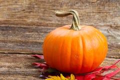 Pumpkin on table Stock Photos