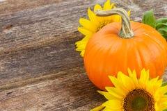 Pumpkin on table Stock Image