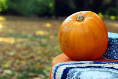 Pumpkin on table outdoor Royalty Free Stock Photography
