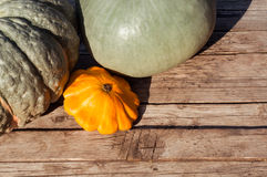 Pumpkin on the table Stock Photography