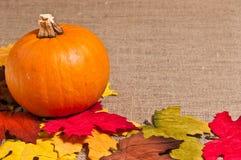 Pumpkin Table Top Royalty Free Stock Image