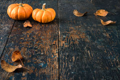 Pumpkin Template on Blue Primitive Wood Background Royalty Free Stock Images
