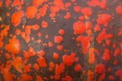 Pumpkin texture Stock Photography