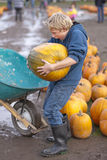 Pumpkin time. Young man holding a very big pumpkin royalty free stock photography