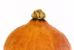 Pumpkin top Royalty Free Stock Image