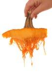 Pumpkin Top Stock Image