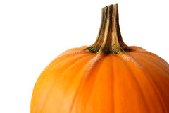 Pumpkin top Stock Image