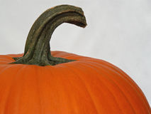 Pumpkin top Stock Photo