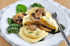 Pumpkin Tortellini with chard and mushrooms Stock Photography