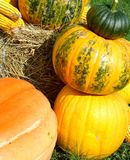 Pumpkin tower Royalty Free Stock Photos