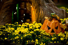 Pumpkin & Tree. Pumpkin on yellow lower bed with tree house behind Stock Photos