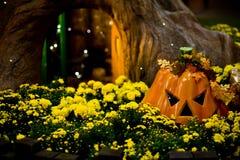 Pumpkin & Tree Stock Photos